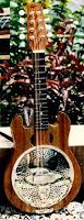 Recording King (AXL) Resonator Mandolin