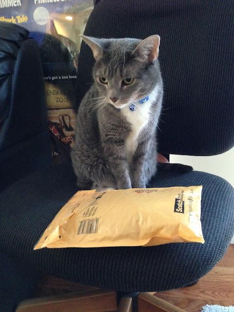 cat mail