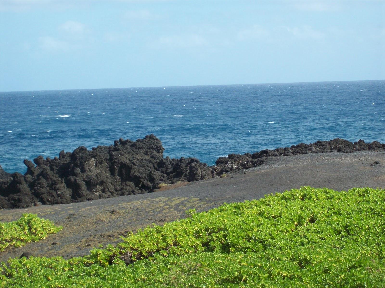 Hawaii Day 5 - 114_1517.JPG
