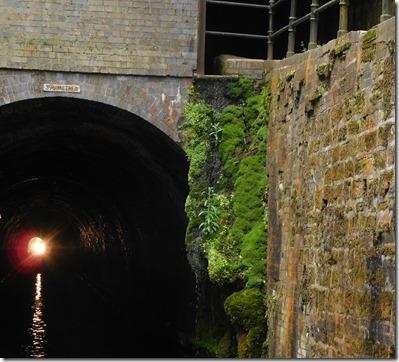 6 shrewley tunnel moss curtain