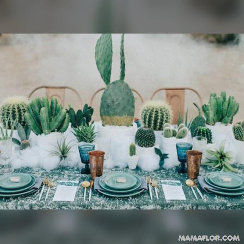 Centros-de-mesa-para-Boda-con-cactus-y-suculentas---7