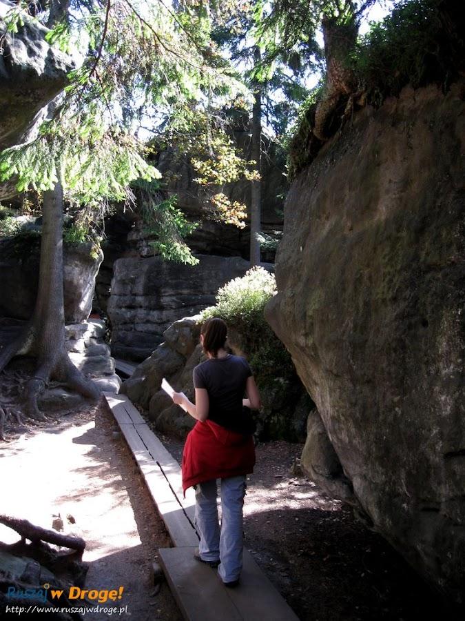 błędne skały - ścieżka między skałami