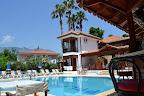 Фото 4 Palma Rosa Hotel