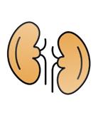 peritoneal dialysis complications peritoneal dialysis vs hemodialysis peritoneal dialysis catheter peritoneal dialysis dwell time peritoneal dialysis at home peritoneal dialysis and diabetes peritoneal dialysis access peritoneal dialysis and hemodialysis peritoneal dialysis adverse effects