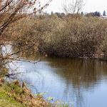 20150413_Fishing_Spaniv_028.jpg