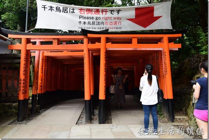 廟方擔心外國人不懂規矩,所以在千本居的地方特別說明右側通行。其實也只有這個地方有左右兩條平行的鳥居路線。