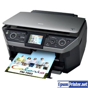 How to reset Epson PM-T960 printer
