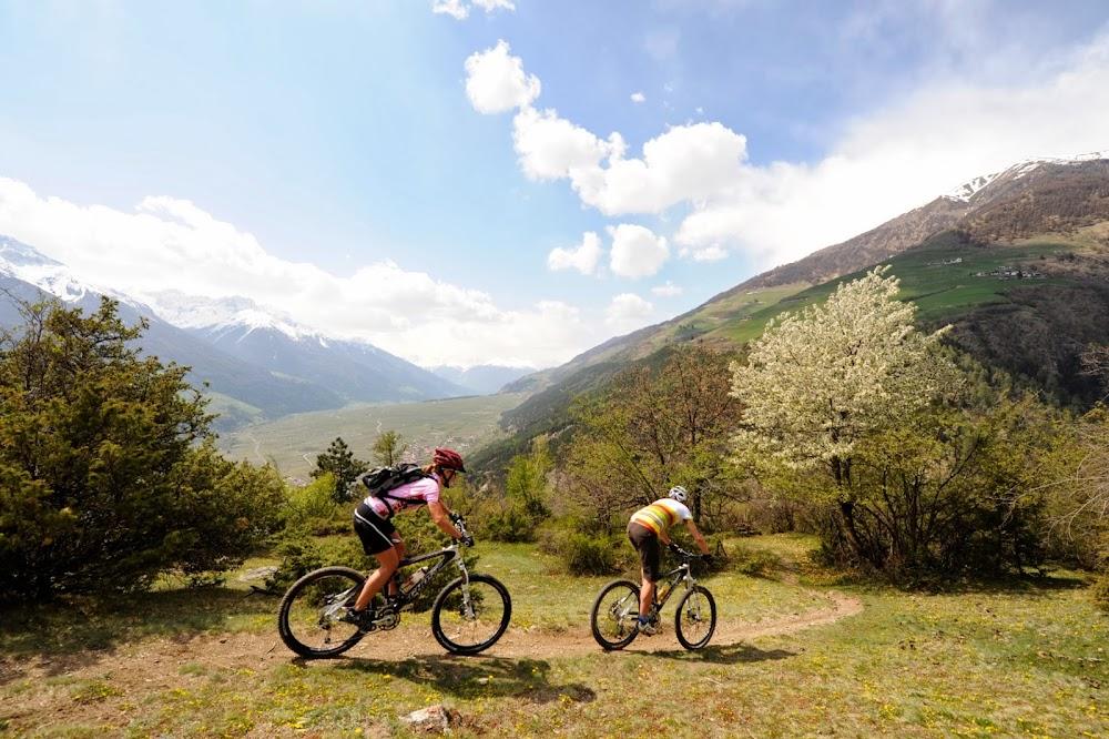 Bike & Rad