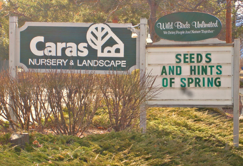 My family was inspired by the Caras Nursery sign.