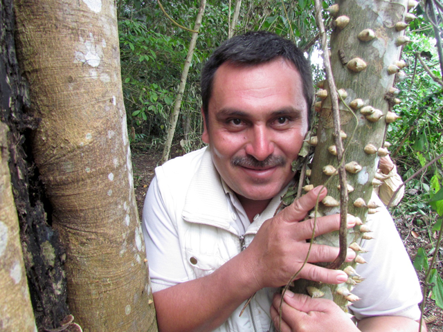 Walter Manfredo Méndez Barrios was shot on the morning of 16 March 2016 while on his way to his plot of land inside Sierra del Lacandón National Park, one of the core zone areas of the Maya Biosphere Reserve. Méndez Barrios was the president of the La Lucha Cooperative, one of a cluster of farming cooperatives in the southeastern part of Sierra del Lacandón National Park. Established in the late 1970s, La Lucha later also became involved in the sustainable harvest of timber and non-timber forest products. Photo: Defensores de la Naturaleza