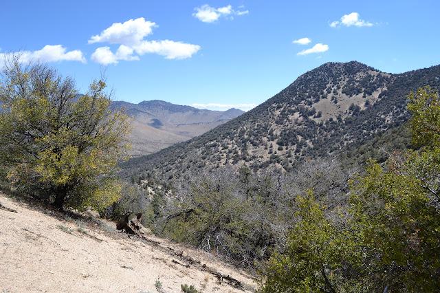 peak north of Scodie and the valley beyond