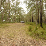 Intersection near Monkey Face Viewpoint in the Watagans (322886)