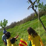 Campaments de Primavera de tot lAgrupament 2011 - IMGP0536.JPG