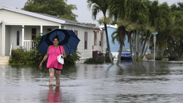 Peggy Wallace walks near her flooded neighborhood in Davie, Florida, on 7 June 2017. With Hurricane Irma bearing down on Florida, an Associated Press analysis shows that the number of federal flood insurance policies written in the state has fallen by 15 percent. Photo: Lynne Sladky / AP