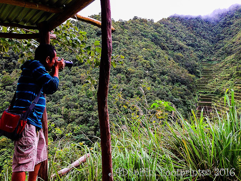 The Photographer and the Rice Terraces