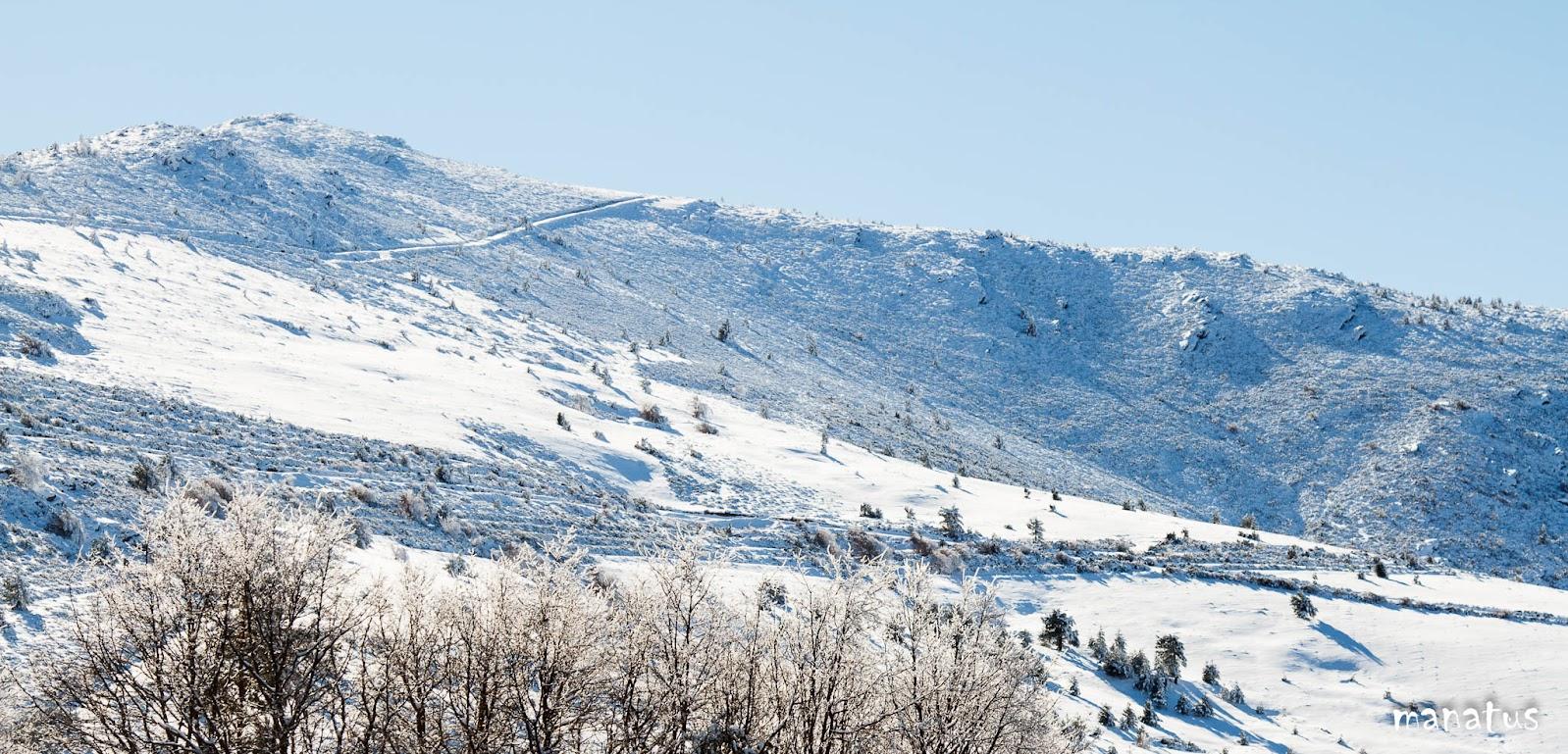 manatus monte nevado