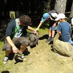 Sommerlager Norderstedt 2011: Tierpark