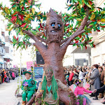 CarnavaldeNavalmoral2015_101.jpg