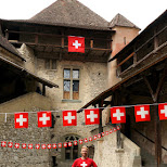 matt at Chillon Castle in Switzerland on Swiss National Day in Veytaux, Vaud, Switzerland
