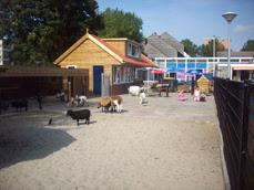 vernieuwde-kinderboerderij.jpg