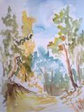 sosny w Świnoujściu, akwarela, karton, 24x30cm