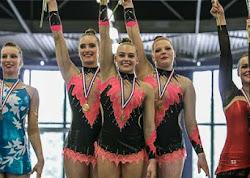 Han Balk Fantastic Gymnastics 2015-2747.jpg