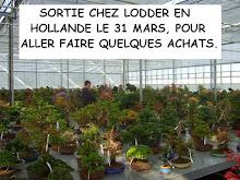 Hollande01
