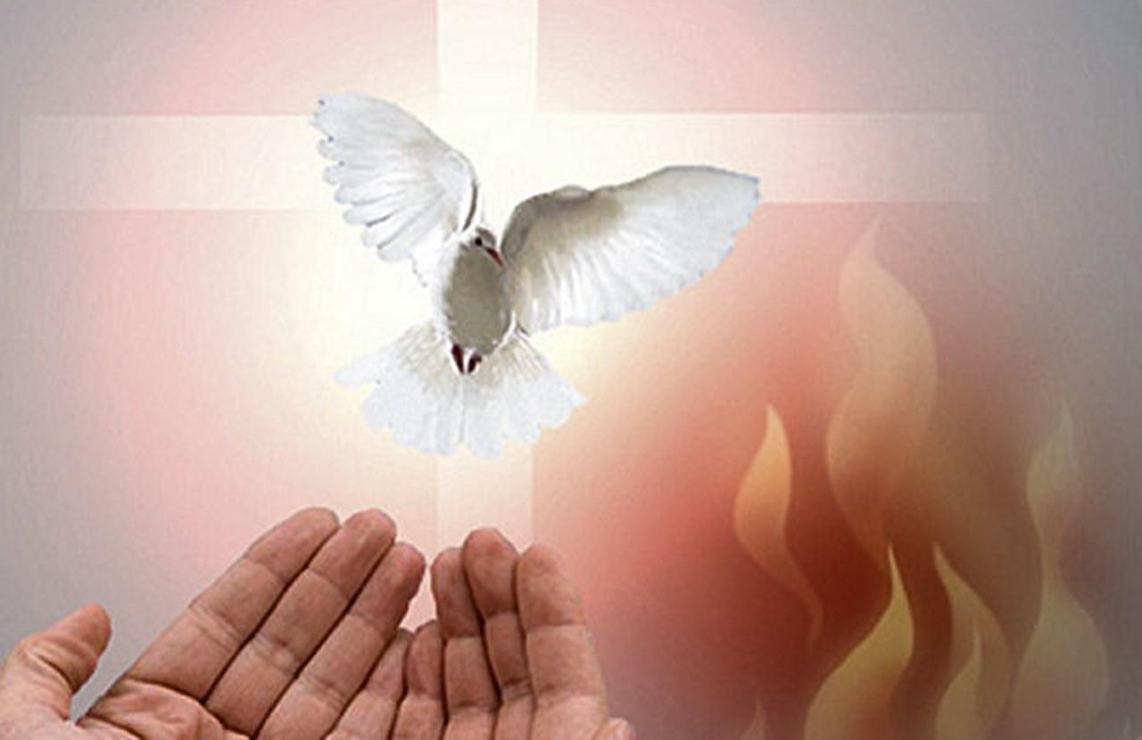 Hãy nhận lấy Thánh Thần (23.5.2021 – Chúa Nhật – Lễ Chúa Thánh Thần hiện xuống)