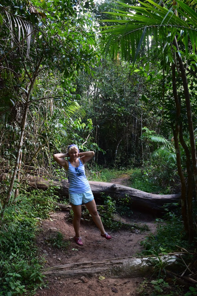 After checking into our new campsite and having the folks there hold our camping gear, we set off on the trail to the famous Haew Suwat waterfall.... the 3.8km trail goes through some amazing jungle!....
