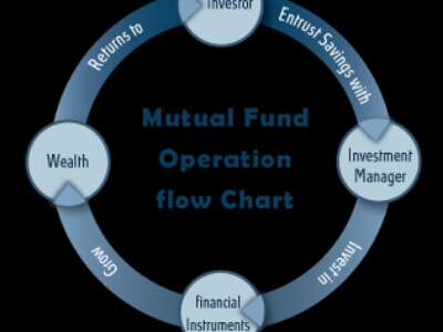 Mutual Fund Advisor Insurance Serviceslichealthmotor