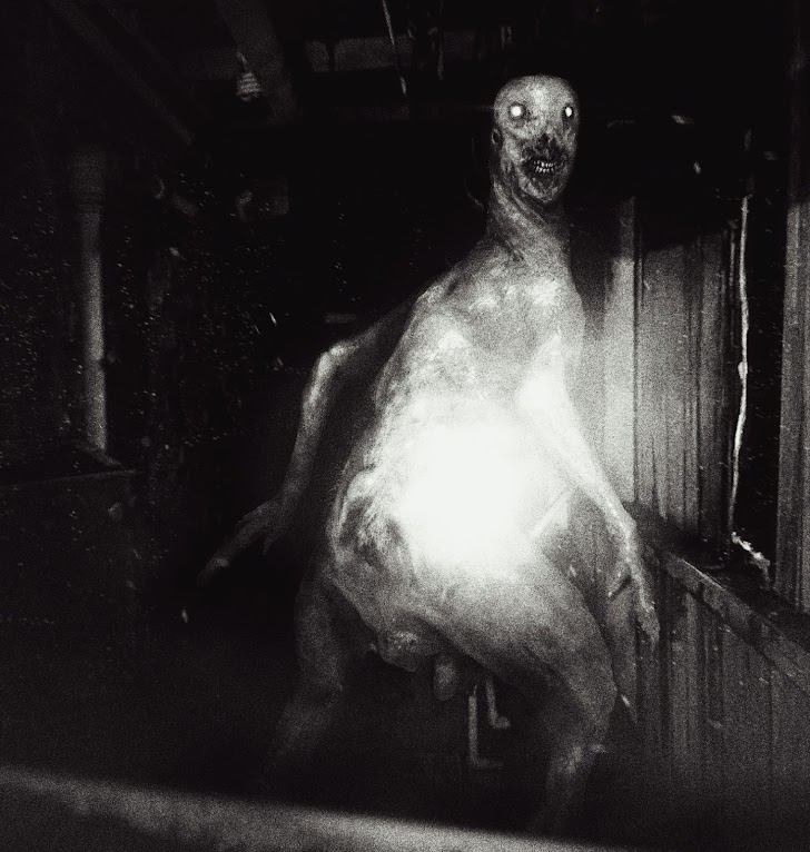 SCP 3199