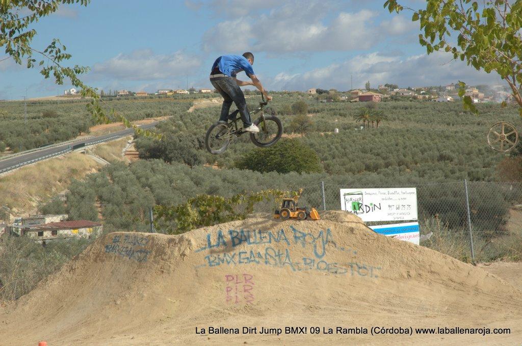 Ballena Dirt Jump BMX 2009 - BMX_09_0004.jpg