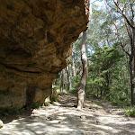 Camping cave at Chinamans Gully (314558)