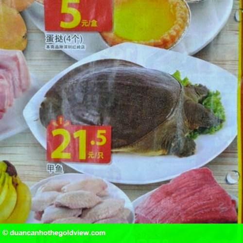 Hình 8: Hãi hùng cá sấu nguyên con, cá mập được bày bán trong siêu thị