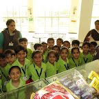 Community Helpers (Grocery) Store) 12-09-2016