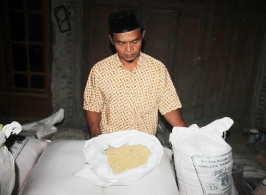 berita foto video sinar ngawi terbaru: inilah alasan petani enggan tanam kedelai di musim tanam kedua tahun ini