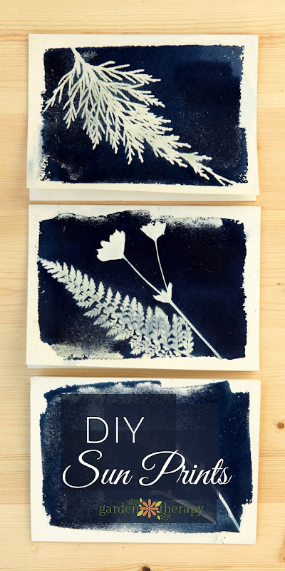How-to-make-sun-prints