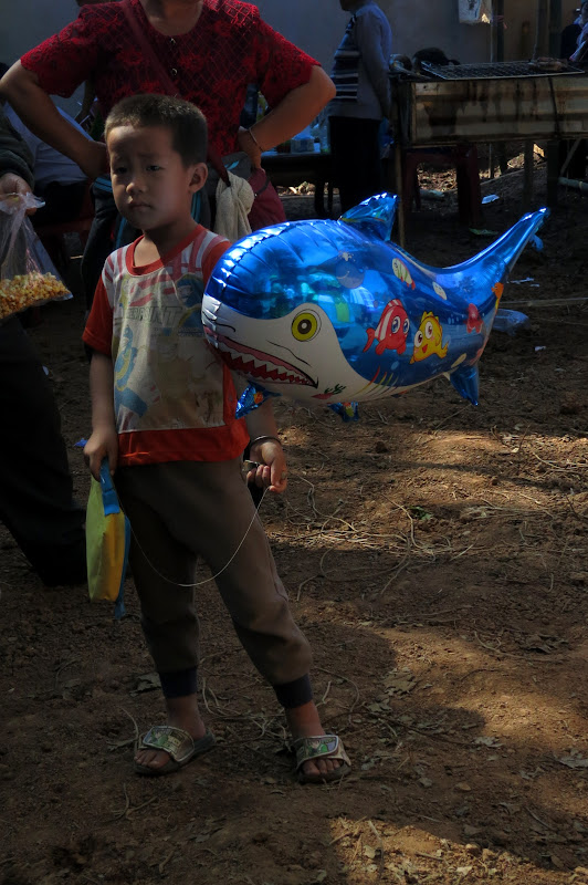boy with shark balloon
