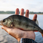 20140517_Fishing_Bochanytsia_009.jpg