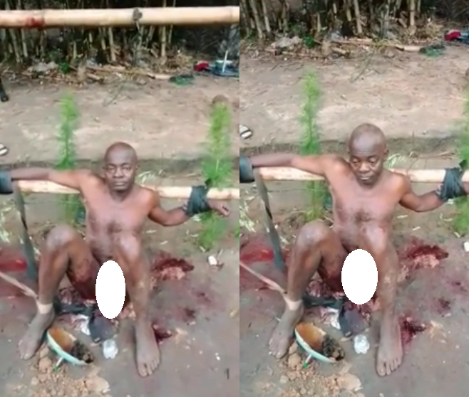 """Horrific video shows man's pen!s mutilated by IPOB supporters for """"working with the government to point hands against his people"""" (Graphic video)"""