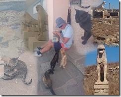 DSC_0246 Collage