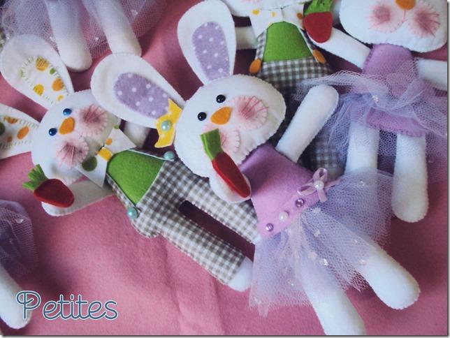 coelhos01