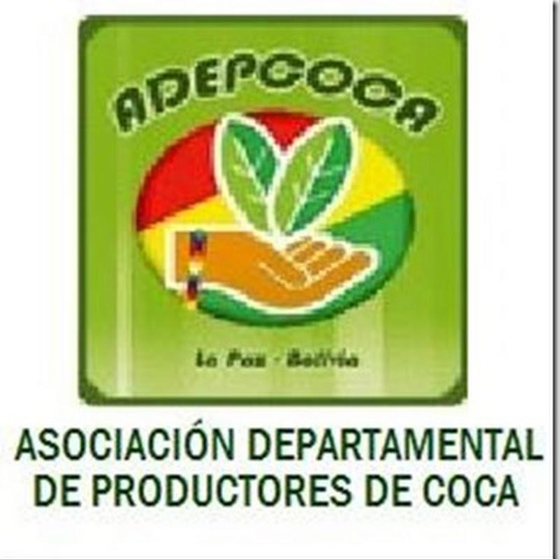 Adepcoca (1983): Asociación Departamental de Productores de Coca (Bolivia)