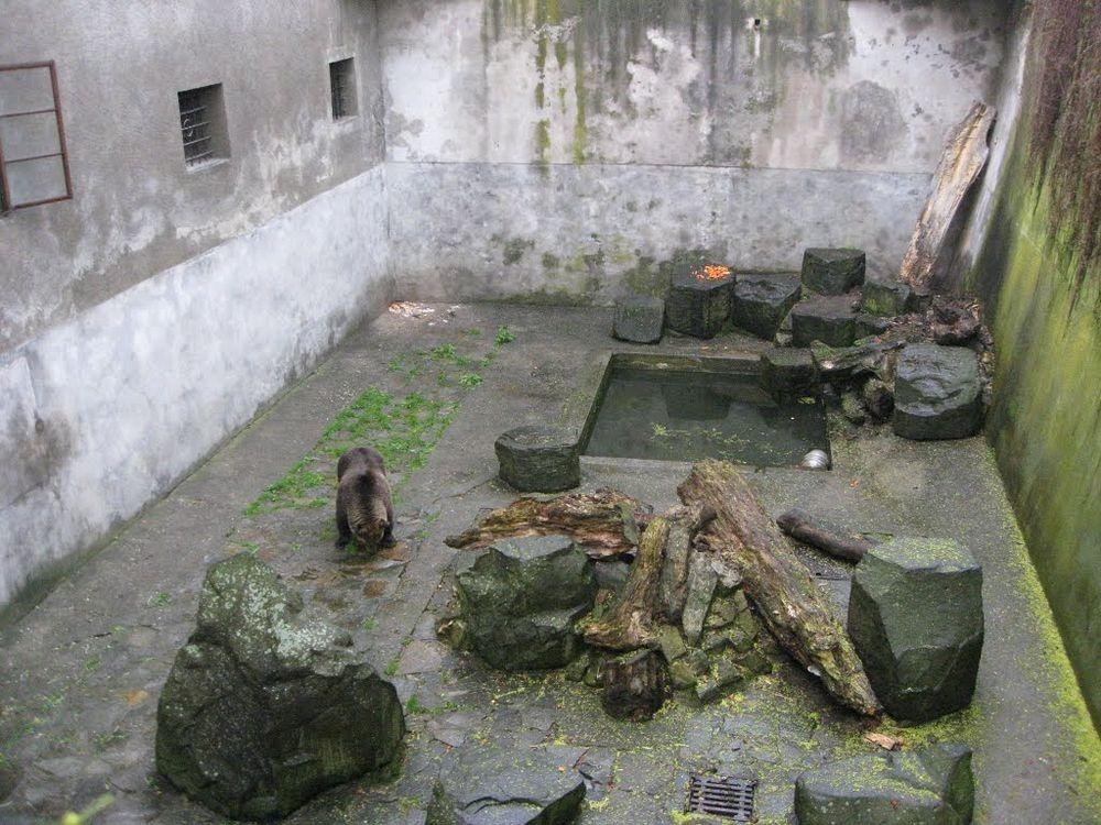cesky-krumlov-castle-bears-1