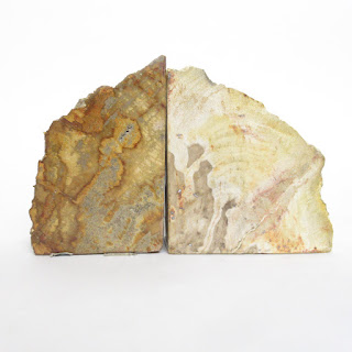 Petrified Wood Bookend Pair