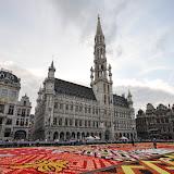 2012 Brussels Flower Carpet