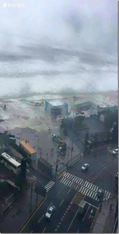 tsunami-busan-korea-2016