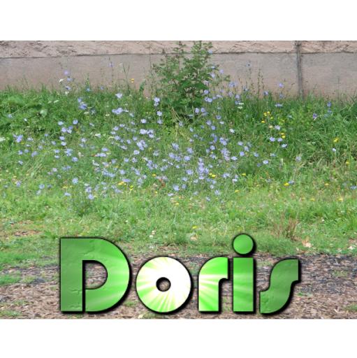 Doris Singer