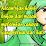 Rabiatul Adawieyah's profile photo