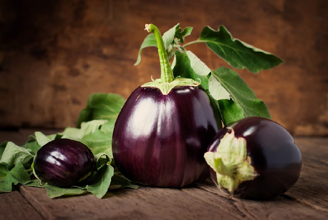La culture d'aubergine